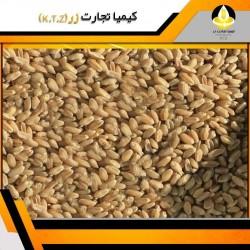 خرید و فروش گندم فارس